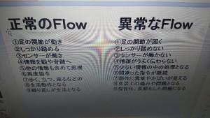 DSC_0008-800x450
